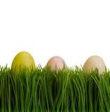 3 цветастых яичка на зеленой траве Стоковое фото RF