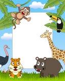 3 африканских животного обрамляют фото Стоковые Фотографии RF
