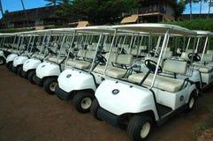 热带3辆购物车的高尔夫球 库存照片