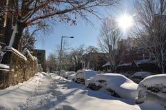 3 2010雪 库存图片
