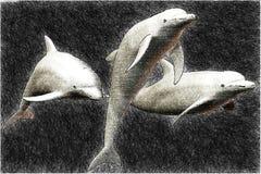 3只海豚草图 皇族释放例证