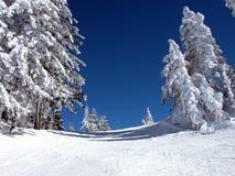3滑雪倾斜 免版税库存图片