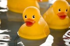 橡胶3只的鸭子 免版税图库摄影