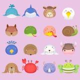 逗人喜爱的动画片动物头设置了3 免版税库存图片