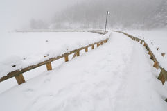 3 abant桥梁湖 免版税库存图片