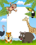 3 afrykańskich zwierząt ramowa fotografia Zdjęcia Royalty Free