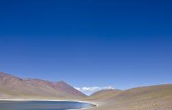 3 altiplano智利miniques 免版税库存图片