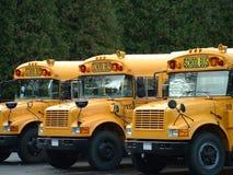 3 autobus scolaires Photos libres de droits