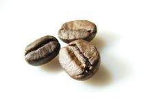 3 bönor brown naturligt kaffe Royaltyfria Bilder