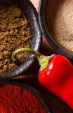 3 bacias encheram-se com as especiarias e uma pimenta de pimentão vermelho Imagem de Stock