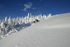 3 backcountry滑雪 免版税图库摄影