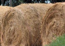 3 Bales сена Стоковые Изображения