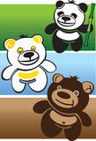 3 bears. Vector illustration of 3 bears: Brown Bear, Panda and Polar bear Stock Photography