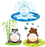 3 bears - brown bear, panda, polar bear Royalty Free Stock Photos