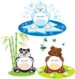 3 bears - brown bear, panda, polar bear. Set of oval frames - animals for kids - 3 bears - brown bear, panda, polar bear Royalty Free Stock Photos
