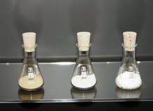 3 bechers scientifiques Images stock