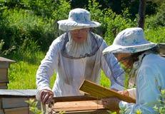 3 beekeepers Fotografering för Bildbyråer