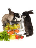 3 bunnies with shopping cart and veggies. 3 bunnies with miniature shopping cart and vegetables, on white background Royalty Free Stock Photo