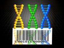 3 catene e codice a barre del DNA illustrazione vettoriale