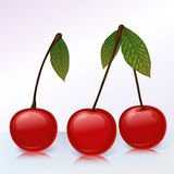 3 cherries Stock Photo