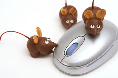 3 chocolate mice & mouse. Shot of 3 chocolate mice & mouse Royalty Free Stock Photo