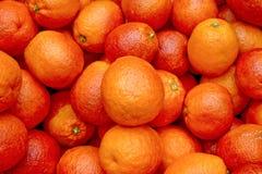 3 cholernej pomarańczy obrazy stock