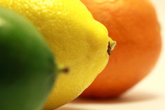 3 citrus fruits Stock Image