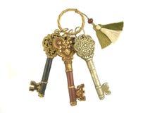 3 clés squelettiques Photographie stock