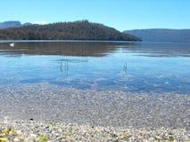3 clair湖st 库存照片