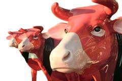 3 cows - bull, bullock,oxen, ox Stock Photography