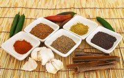 3 currykryddor Royaltyfri Bild