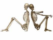 3 d скелета друзей всегда иллюстрация вектора