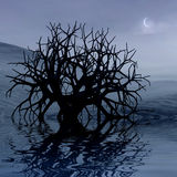 3 d graphics night landscape. 3 d graphics night fantasy landscape with lonely tree Stock Photos