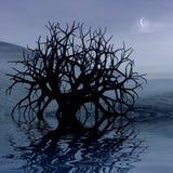 3 графика d landscape ноча Стоковые Фото