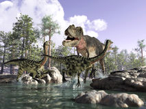 3 D scene of a T Rex, hunting two Gallimimus. Photorealistic 3 D scene of a Tyrannosaurus Rex, hunting two Gallimimus, running in a river with rocks and trees Royalty Free Stock Image