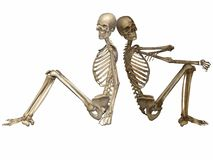 3 D Skeletons - Friends for ever Royalty Free Stock Photo