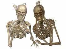 3 D Skeletons - Friends for ever. 3 D Render of an female Skeleton Royalty Free Stock Photos