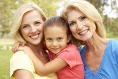 3 de Familie van de generatie in het Park Stock Afbeelding