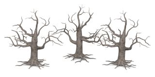 3 dead trees. 3d render of 3 dead trees Royalty Free Stock Photography