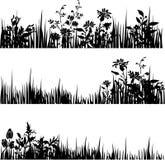 3 divisores del follaje libre illustration