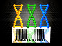 3 DNA chains and barcode. 3 rendered yellow, blue and green DNA chains and barcode, illustration of genome engeneering Stock Image