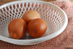 3 eggs. In a white tray Royalty Free Stock Photography