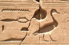3 egypt tecken Arkivfoton
