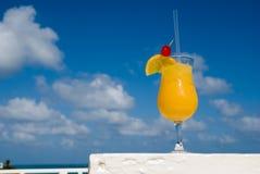 3 egzotyczne napojów. Obraz Stock