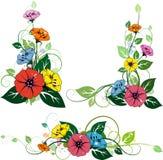 3 elementos florais Foto de Stock Royalty Free
