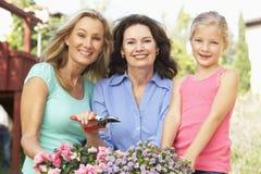 3 Erzeugungs-Familie, die zusammen im Garten arbeitet Stockfotos