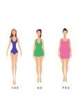 3 formas do corpo da mulher, magros, chubbiness e gordura Imagens de Stock Royalty Free
