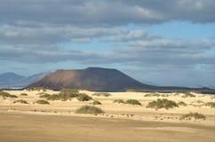 3 Fuerteventura fotografia royalty free