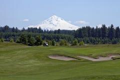 3 fur golfowa zieleń Obraz Royalty Free