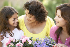 3 Generation Family Gardening Tog Stock Images